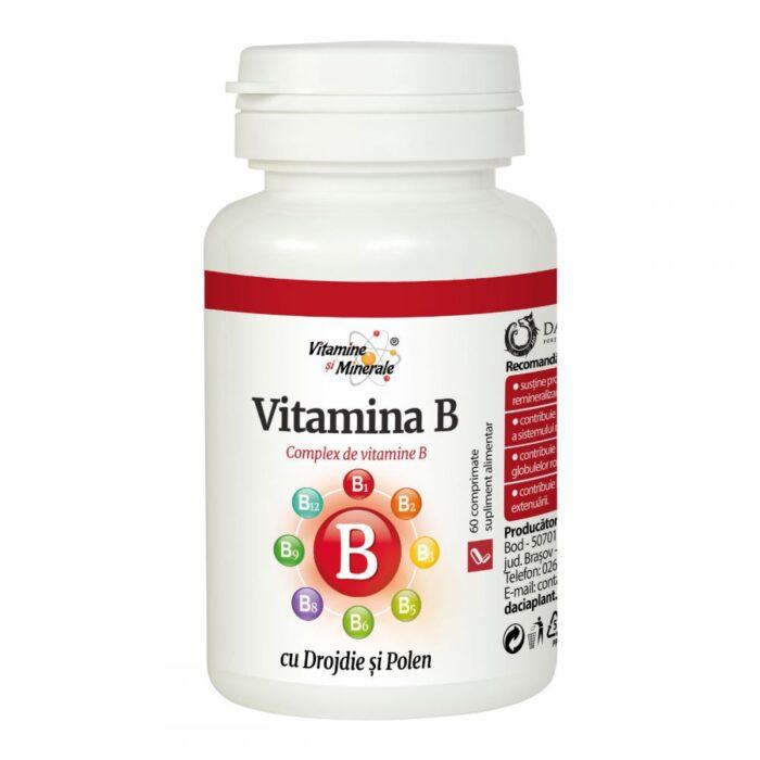 Vitamina b cu drojdie si polen , 60 cpr